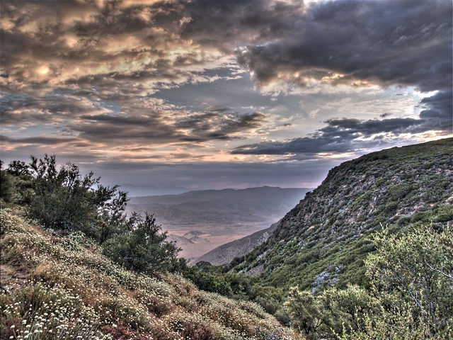 Dawn on the PCT (HDR photo)