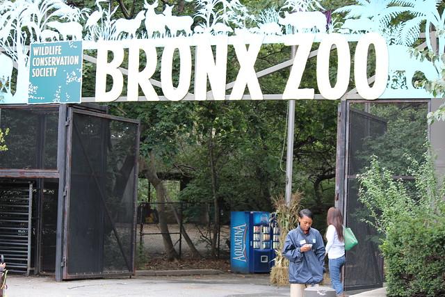 bronx zoo free membership