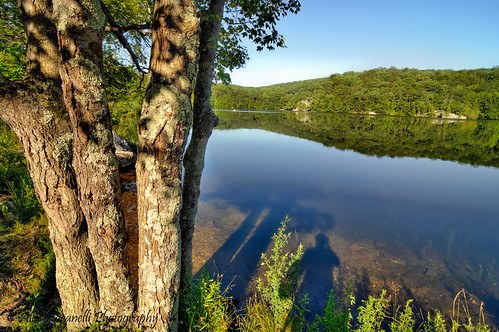 summer newyork landscape seasons unitedstates northamerica hdr canopuslake