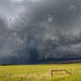 Olds_super_cell_-_storm_chase-41 by tremaine.lea