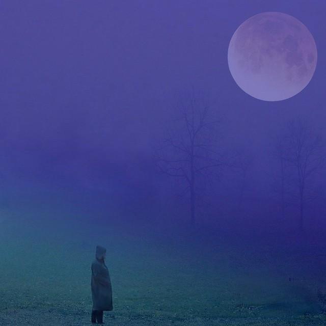 twilight ...