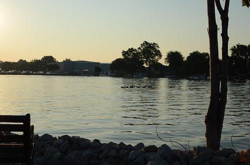 ducks portclinton catawbaisland neportmarina
