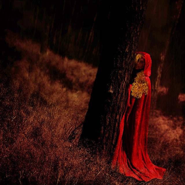 ~ little red riding hood ~