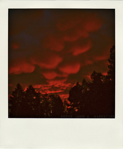 2005 trees sunset red storm newmexico color nature weather silhouette clouds forest photography twilight outdoor dusk photograph sunspot mammatus