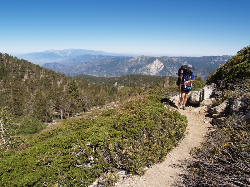 Mt. Baldy in the distance as we climb higher on the San Bernardino Peak Trail