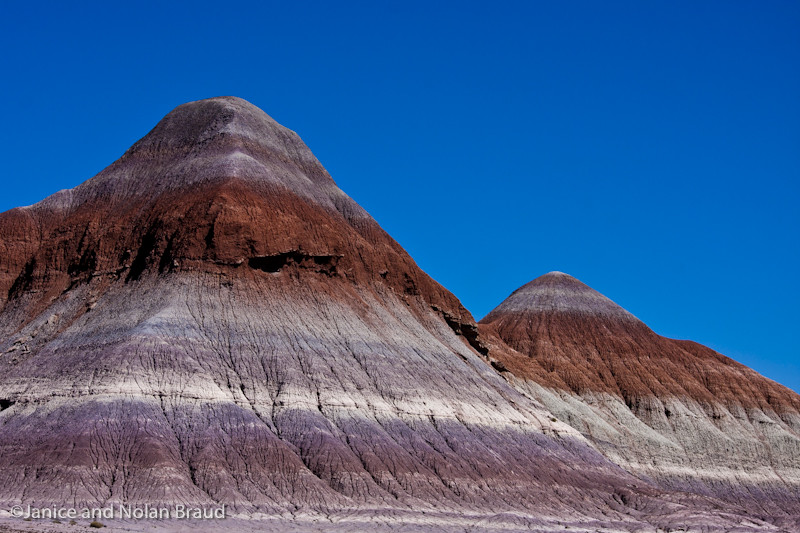 Painted Desert View in Petrified Forest NP JN036947