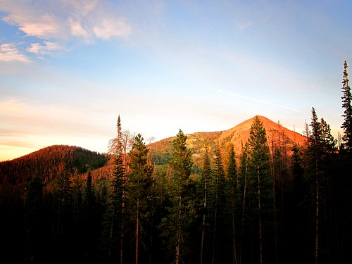 trees sunset mountain forest colorado peak best hahnspeak