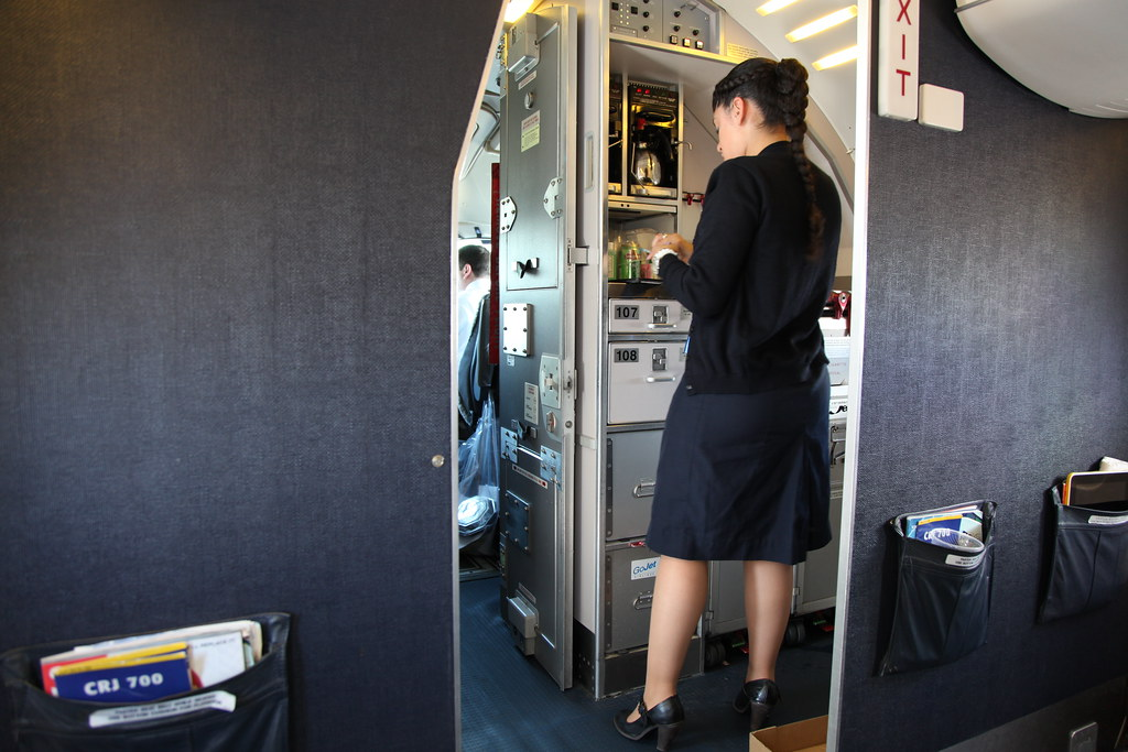 United Airlines Flight Attendant GOJET AIRLINES FLIGHT ...