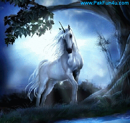 Papel De Parede  3D Horse With Blue Background Animated Live Wallpaper