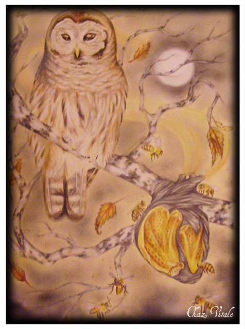 owl and bees