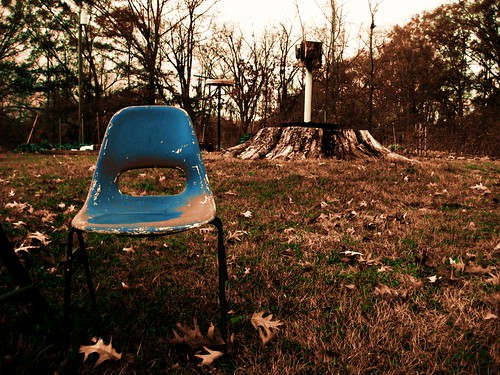 chair, pecan stump, and birdhouse