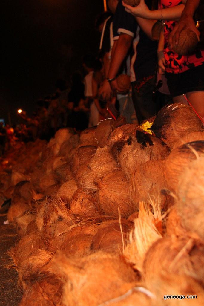Coconuts ready
