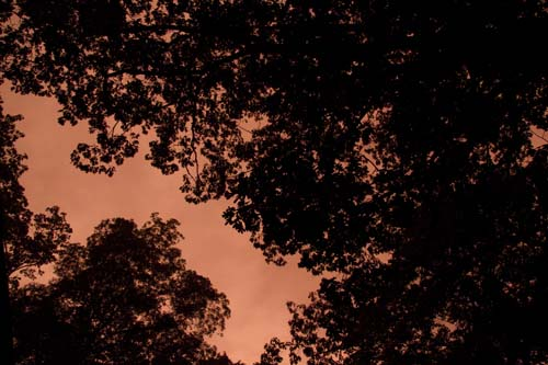 Storm at Dawn 3