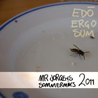 Edo Ergo Sum – Mr Jorgens sommermiks 2011