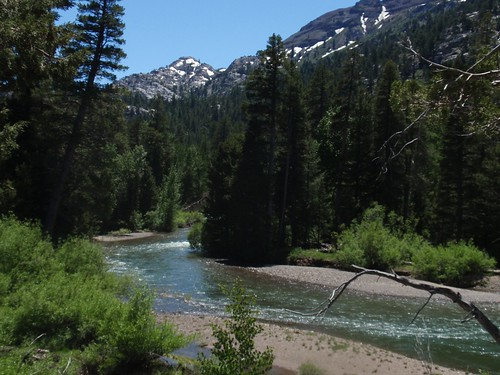 West Walker River 01