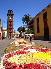Corpus Christi Flower Carpets, Tenerife