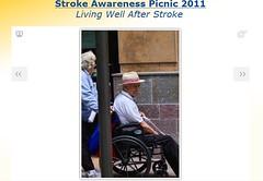 Stroke Picnic OC 2011c