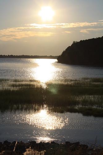 Webb Memorial Park Shoreline 02