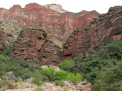 Grand Canyon: Cottonwood Campground View 0290
