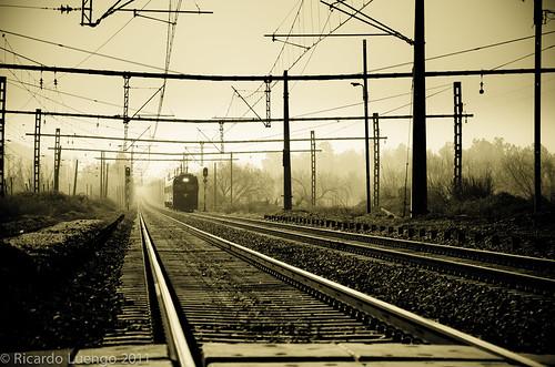 Tren al Sur...