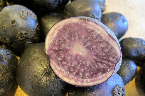 All-Blue Potatoes