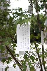 """""""May all the people who gathered here today live out happy and peaceful  lives. Yoko Ono"""""""