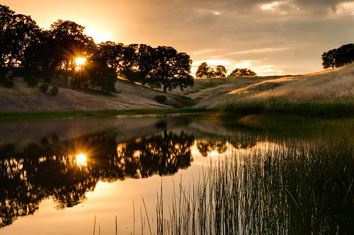 ca sunset usa reflection grass reeds landscape pond unitedstates hills oaks oats manzanita sunstar nohdr
