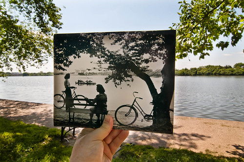 Looking Into the Past: Summertime at Tidal Basin, Washington, DC