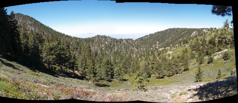 Columbine Spring Trail panorama