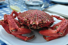 spiny lobster(0.0), lobster(0.0), dungeness crab(0.0), produce(0.0), arthropod(1.0), crab(1.0), animal(1.0), seafood(1.0), invertebrate(1.0), king crab(1.0), food(1.0),