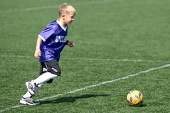 tackle(0.0), women's football(0.0), team(0.0), football player(1.0), ball(1.0), soccer kick(1.0), kick(1.0), grass(1.0), sports(1.0), team sport(1.0), player(1.0), football(1.0), ball game(1.0), ball(1.0),
