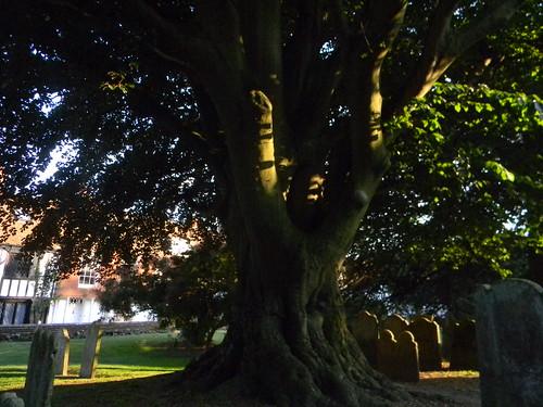 Rye churchyard