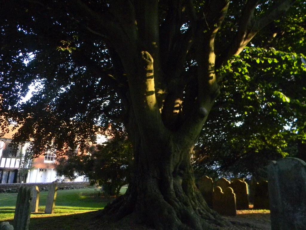 Rye churchyard Tenterden to Rye