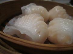 dim sum food, nikuman, siopao, xiaolongbao, mandu, baozi, momo, food, dish, dumpling, jiaozi, khinkali, cuisine,