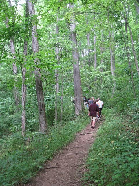 Light Hiking Trail Running Shoes