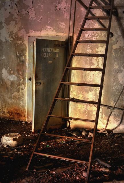Fermenting cellar