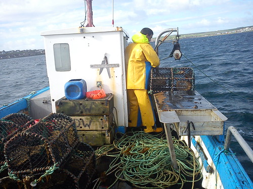 Crab fishing in Orkney