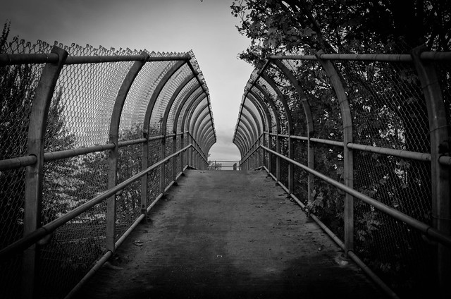 B&W Ped Bridge Picnic Point
