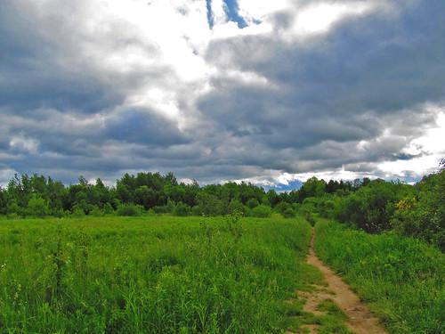 path by jillb0t