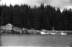 11-19 Vinalhaven, Maine 1936, lobster fishermen