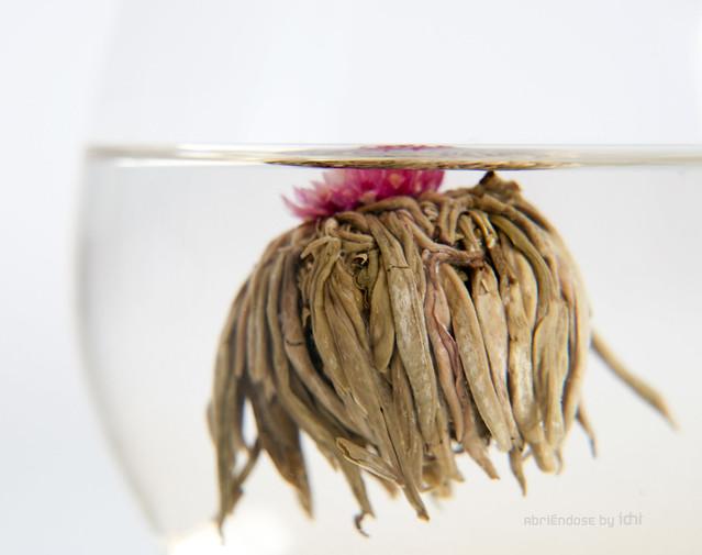 flor de té 2