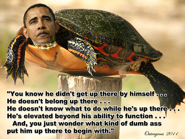 Obama is a Post Turtle