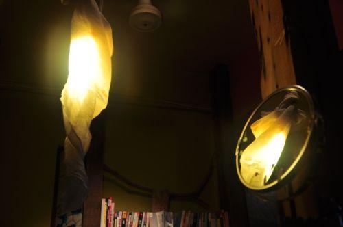 20111112 banana-ilan - 008