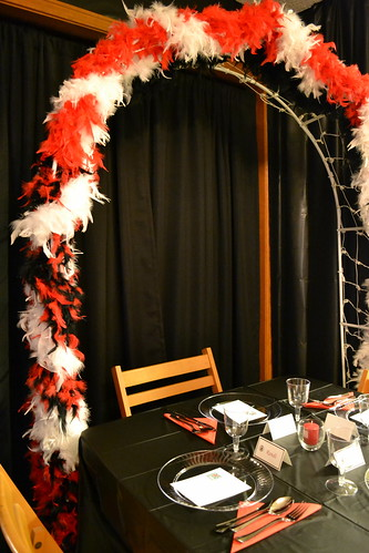 Twilight Saga Table Setting for Party0