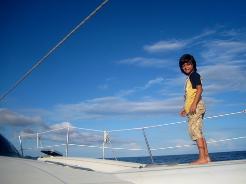 Catamaran and Dolphin Cruise - Utila