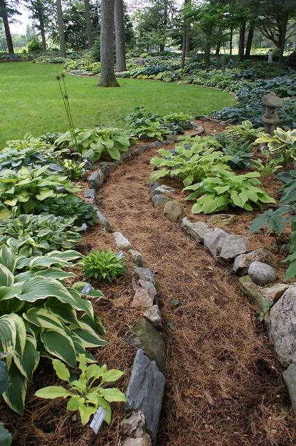 Garden borders curved : Hosta garden curved stone edging flickr photo sharing