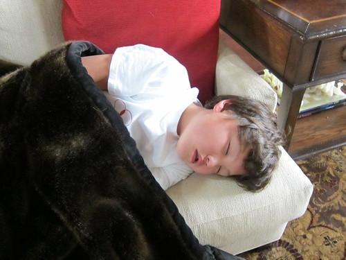 kenzo, sleeping IMG_6981