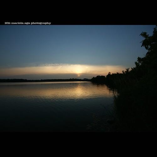 park trees sunset summer sky sun nature water silhouette square golden evening pond wideangle surface silence schaumburg ripples tones bushes thegalaxy bussewoodsforestpreserve sailsevenseas mygearandme mygearandmepremium mygearandmebronze mygearandmesilver mygearandmegold