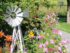 Flowers-Garden-Parks