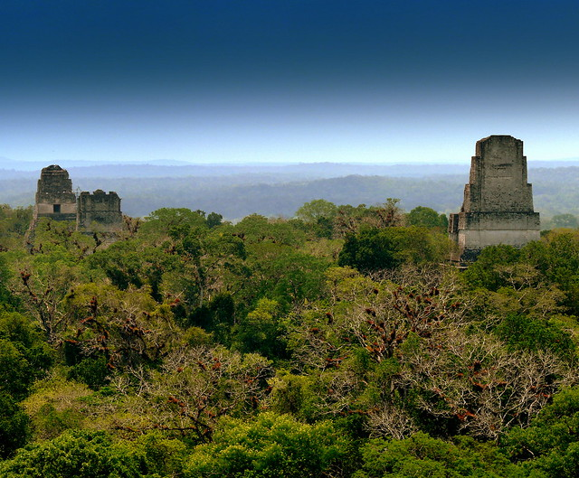 Mayan City Of Tikal (Front Page Explore #9)